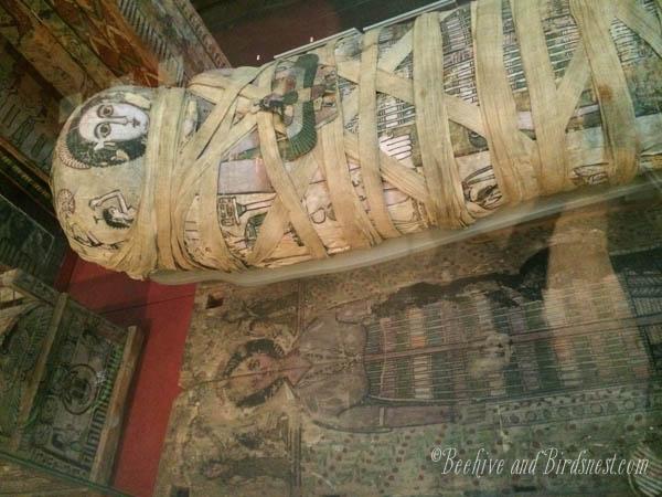 Cleopatras mummy